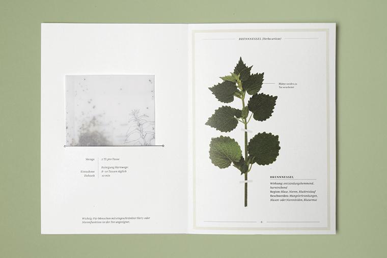 herbarium-content-7