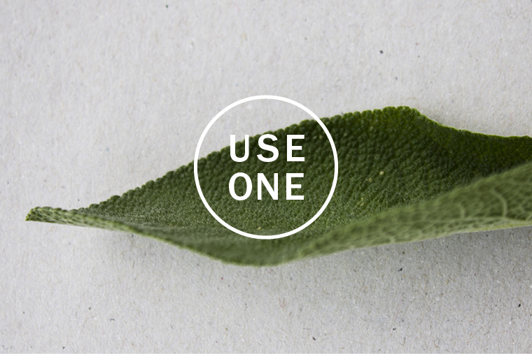 useone-content22